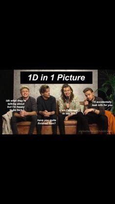 Haha so true One Direction Imagines, One Direction Humor, Direction Quotes, I Love One Direction, 1d And 5sos, Gays, Edward Styles, Hessa, British Boys
