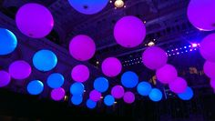 48 x giant cloidbuster Balloons. Lit by smartlights. Design by 'Team Event' Sydney. Send Balloons, Balloons Online, Purple Balloons, Giant Balloons, Balloon Delivery, Team Events, Balloon Gift, Gifts Delivered, Balloon Bouquet