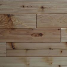 Custom tongue and groove wood paneling for walls and ceilings, tailored to the look & style you want. Pine paneling, cedar & many hardwood species. Tongue And Groove, Wood Paneling, Paneling, Ship Lap Walls, Tongue And Groove Panelling, Wood, Hardwood, Wall Paneling, Western Red Cedar