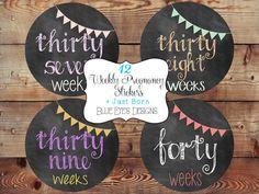 ON SALE Weekly Pregnancy StickersPregnancy by blueeyesdesigns27