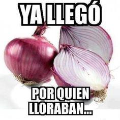 km orang ato bawang Mexican Jokes, Funny Jokes, Hilarious, Funny Sayings, Memes Humor, Mexicans Be Like, Mexican Problems, Humor Mexicano, Spanish Humor