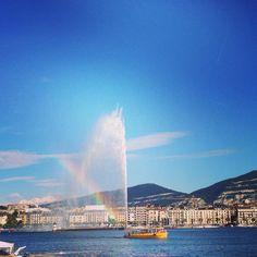 Under the rainbow genevois