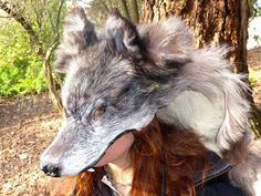 hooded wolf pelt cape | RESERVED Wolf hood/cape headdress - real wolf fur totem dance costume ...