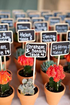 cacti and succulent escort cards doubling as favors- what a cute idea. If hosting a small dinner party, could use bigger succulents. Wedding Seating, Wedding Table, Our Wedding, Dream Wedding, Wedding Card, Wedding Desert, Party Wedding, Party Decoration, Wedding Decorations