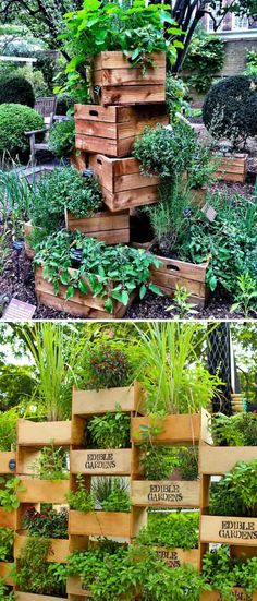 DIY Ideas to Build a Vertical Garden for Small Space Stacking old boxes to form a vertical garden Home And Garden Store, Old Boxes, Garden Boxes, Garden Ideas, Garden Projects, Patio Ideas, Potting Soil, Growing Herbs, Small Patio
