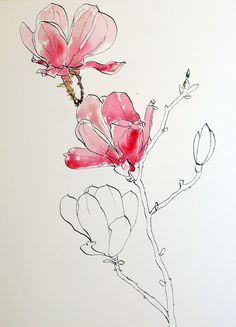 Image from http://penandinktechniques.com/wp-content/uploads/2012/11/Start-watercolor-wash-for-pink-magnolias-pen-ink-and-wash-painting.jpg.