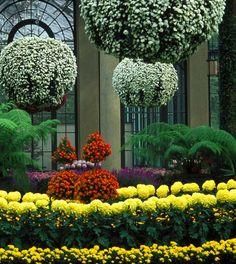 Famous Gardens of the World - Longwood Gardens, Kennett Square, Pennsylvania, USA! Beautiful Flowers Garden, Love Garden, Dream Garden, Beautiful Gardens, Gardens Of The World, Famous Gardens, Longwood Gardens, Public Garden, Garden Inspiration