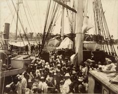 """The second indentured servants in Suriname were the Indians. They arrived with the ship Lala Rookh in 1873 in Suriname. It wasn't easy for the Dutch government to handle the Indians, because they stood up for their rights. They victimized the workers and let them live in poor conditions. Overall, the """"collaboration"""" between the Indians and the government didn't went well and the government decided to """"work"""" with the Javanese instead of the Indians. The first Javanese arrived in 1890."""