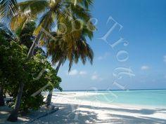 GlobeTrottingKids - Mare, Spiaggia, Relax... Paradiso Maldive!