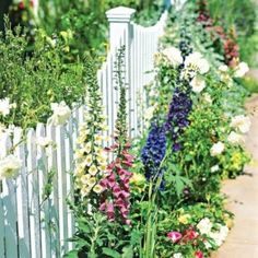 Beautiful Flower Garden For Your Front Yard 96