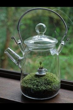 Teapot Terrarium - with an ironic flare