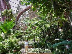 Balboa Park Botanical Garden | ... Photo in High Resolution - Botanical Garden…