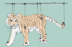 the symmetry of the tyger is enhanced by the