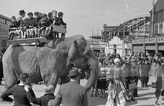 Schoolboys view the grounds at Belle Vue, the popular amusement park in Manchester, from their seat on Lil the elephant. Original Publication: Picture Post - 1438 - Holiday In Belle Vue - pub.1943