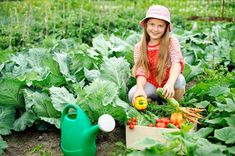 Children and the Environment: How gardening lessons impact positively on schoolkids - news - The Ecologist Vegetable Garden Planner, Starting A Vegetable Garden, Vegetable Gardening, Organic Fertilizer, Garden Projects, Teaching Kids, Container Gardening, Greenery, Healthy Eating