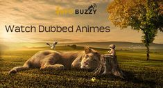 Watch anime dubbed online through the listed websites.