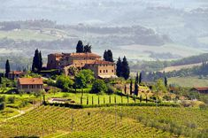 If we had to choose only one reason to visit Italy, let it be the fact that the country is home to some of the most incredible vineyards #adventure #eurotrip #europe