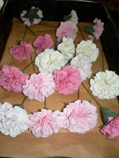 Carnations hand crafted in sugar