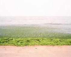 Coastline by Zhang Xiao