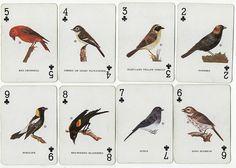 creduli:  Vintage Cards by takeabreak on Flickr.
