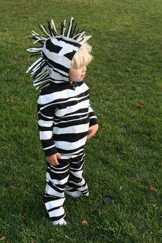 How to make a homemade Halloween zebra costume.