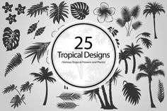 Check out 25 Tropical Designs (Vector) by BioWorkZ on Creative Market
