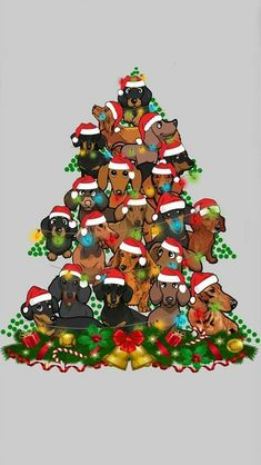 Dachshund Art, Dachshund Gifts, Dachshund Puppies, Chihuahua, Christmas Dog, Christmas Pictures, Christmas Greetings, Christmas Cards, I Love Dogs