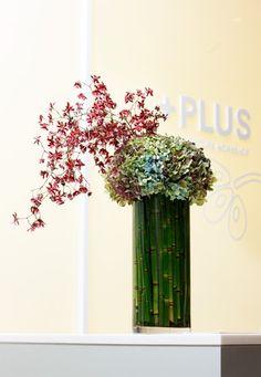 Nicolai Bergmann Modern Floral Arrangements, Flower Arrangements, Flower Vases, Flower Art, Corporate Flowers, Floral Design, Art Floral, Unusual Plants, Green Flowers