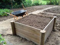 Potager en carré, Tuteurs en robinier carrés pointés, tuteur idéal pour tomates dans le potager bio