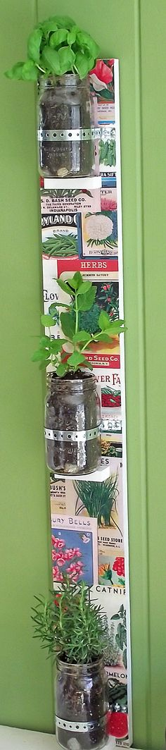 Bring the outdoors inside with this easy DIY mason jar herb garden. The vintage seed packets add a fancy touch!