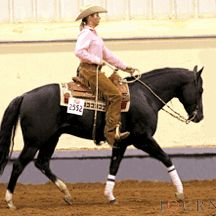 Style and breeding Ranch Riding Equestrian Outfits, Equestrian Style, Cute Horses, Beautiful Horses, Ranch Riding, American Quarter Horse, Horse Training, Horse Tack, Show Horses
