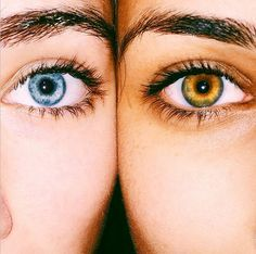 Comment your eye color😜 uploaded by TroubledPegasus Best Friend Pictures, Bff Pictures, Friend Photos, Pictures Of Eyes, Photos Of Eyes, Close Up Pictures, Random Pictures, Amazing Pictures, Tumblr Bff