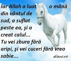 ro: Cum înveţi un cal să zboare - Poveste de Paulo Coe. Allah, God