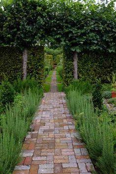 Rosemary hedge inspired by visit this spring to Le Jardin Francois in Marrakesh (Miss Jessop's Upright) Brick Pathway, Brick Garden, Garden Paving, Garden Paths, Brick Courtyard, Stone Path, Herb Garden, Vegetable Garden, Brick Patios