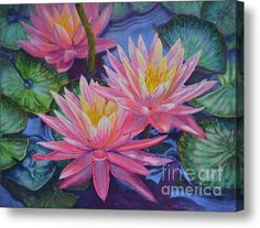 Water Lilies 1 Acrylic Print By Fiona Craig (from an original watercolor painting)