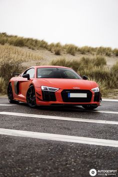 Audi Plus Sport Performance Parts - 27 January 2019 - Autogespot Audi R8 Sport, Sport Cars, Audi Rs3, Audi R8 Black, Logo Audi, Sedan Audi, Audi R8 V10 Plus, Street Racing Cars, Fancy Cars