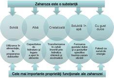 DIZAHARIDE - COMPUSI ORGANICI CU IMPORTANTA FIZIOLOGICA Malta, Plant
