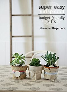 20130529-01-easy-burlap-hessian-decorating-ideas-with-succulents-and-coastal-stripes-abeachcottage-