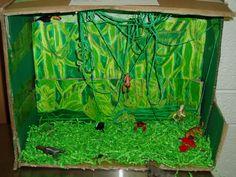 6th grade Biome Project Samples | Mrs Sosa's Class
