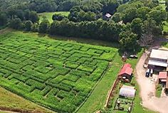 10 Amazing Corn Mazes in Connecticut