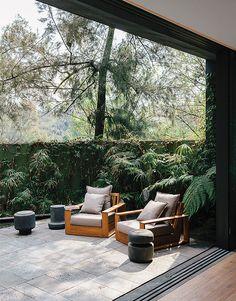 Sehr elegante Terrasse aus Mexiko mit dem großartigen Bücherfarn (http://www.galasearch.de/plants/14402-cyathea-cooperi) und dem nach den Exzessen der 70er Jahre wieder stylischen Zyperngras (http://www.galasearch.de/plants/13184-cyperus-alternifolius). Leider müssen beide drinnen überwintern.