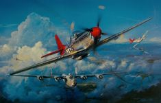 """flown by the fighter group - The Tuskegee Airmen """"Red Tailed Angels"""" Ww2 Aircraft, Fighter Aircraft, Military Aircraft, Fighter Jets, Aviation Theme, Aviation Art, Tuskegee Airmen, Aircraft Painting, Airplane Art"""