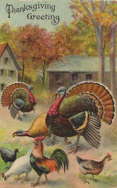 Vintage Thanksgiving Greetings!  Very cool.