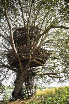 9 | 13 Of The World's Coolest Treehouses | Co.Design | business + design