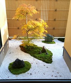 A Zen garden with gravel surfaces, shaped Woods and stones radiates peace and harmony. We give tips on how to create it – both in large format and as a mini-Zen garden. The central elements of the Zen garden Stones, plants and water – these are the mai Japanese Garden Landscape, Small Japanese Garden, Japanese Garden Design, Japanese Gardens, Zen Gardens, Modern Gardens, Cottage Gardens, Small Gardens, Zen Garden Design