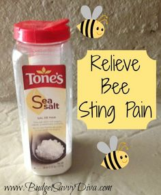 How to Stop Bee Sting Pain
