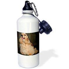 3dRose Cocker Spaniel, Sports Water Bottle, 21oz