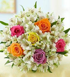 1-800-Flowers - Assorted Rose & Peruvian Lily + Free Vase 1-800-Flowers,http://www.amazon.com/dp/B007Q468OK/ref=cm_sw_r_pi_dp_Y5Yztb1B5M5C751P