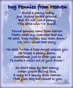 For all our pets over the Rainbow Bridge                                                                                                                                                      More
