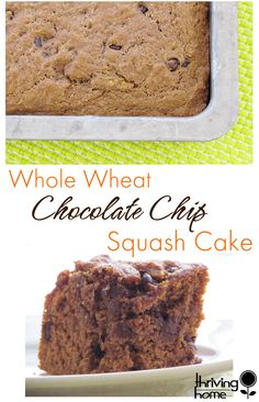 Whole Wheat Chocolate Chip Squash Cake